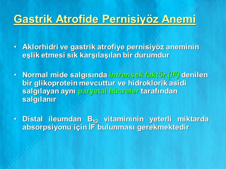 Gastrik Atrofide Pernisiyöz Anemi Aklorhidri ve gastrik atrofiye pernisiyöz aneminin eşlik etmesi sık karşılaşılan bir durumdur Normal mide salgısında