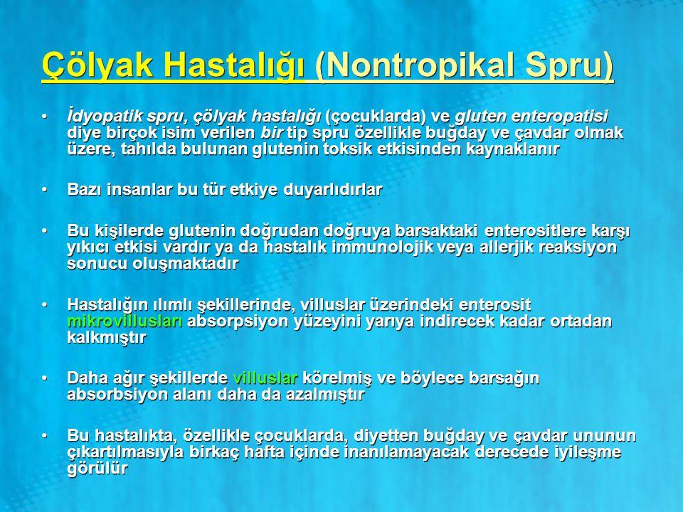Çölyak Hastalığı (Nontropikal Spru) İdyopatik spru, çölyak hastalığı (çocuklarda) ve gluten enteropatisi diye birçok isim verilen bir tip spru özellik