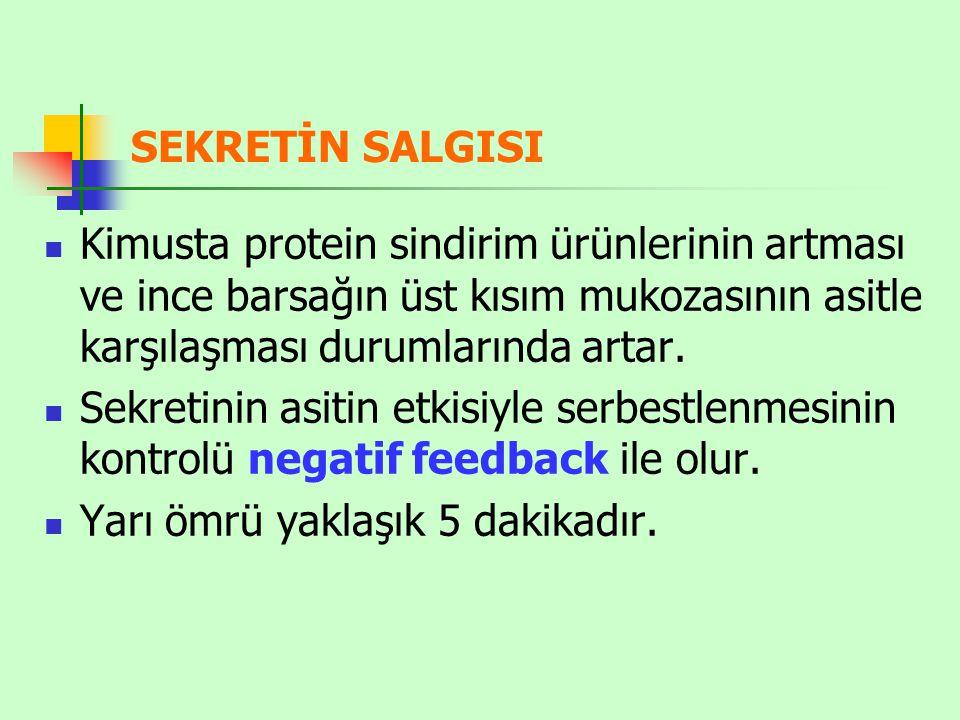 SEKRETİN SALGISI Kimusta protein sindirim ürünlerinin artması ve ince barsağın üst kısım mukozasının asitle karşılaşması durumlarında artar.