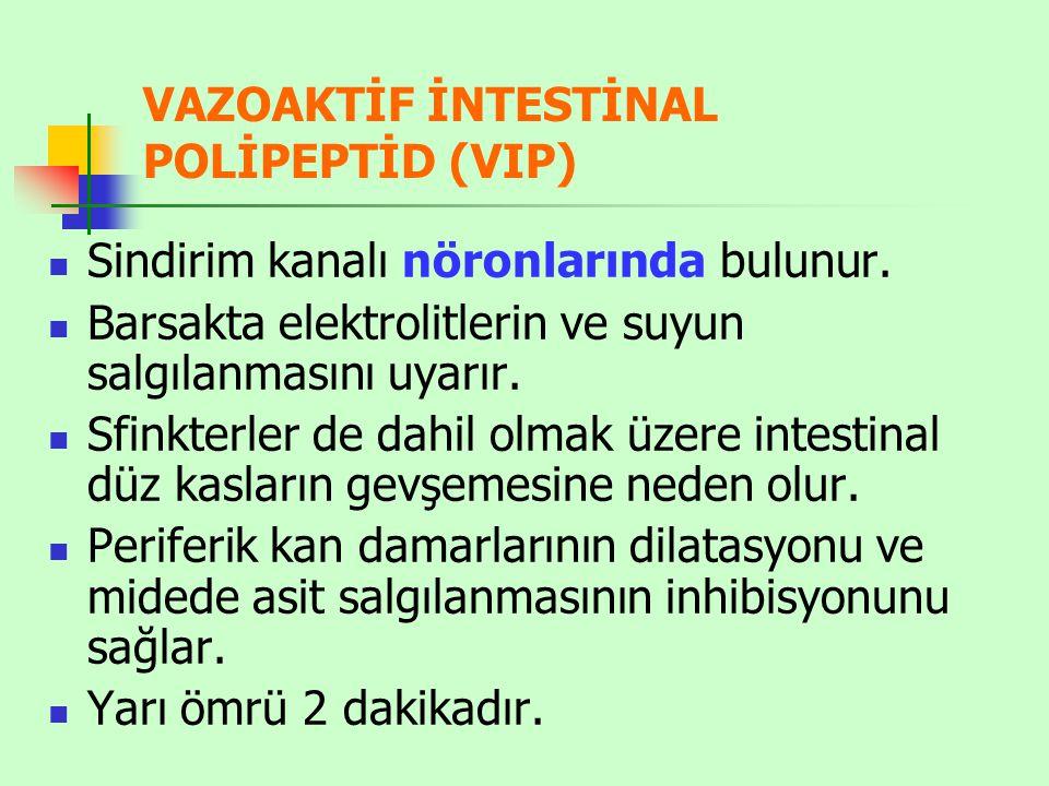 VAZOAKTİF İNTESTİNAL POLİPEPTİD (VIP) Sindirim kanalı nöronlarında bulunur.