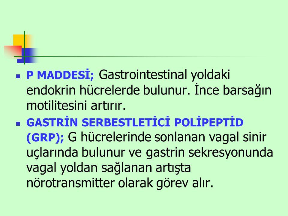 P MADDESİ; Gastrointestinal yoldaki endokrin hücrelerde bulunur.