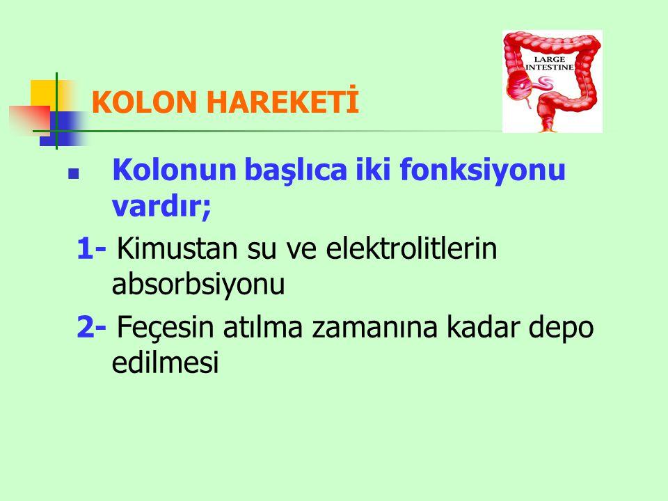 KOLON HAREKETİ Kolonun başlıca iki fonksiyonu vardır; 1- Kimustan su ve elektrolitlerin absorbsiyonu 2- Feçesin atılma zamanına kadar depo edilmesi