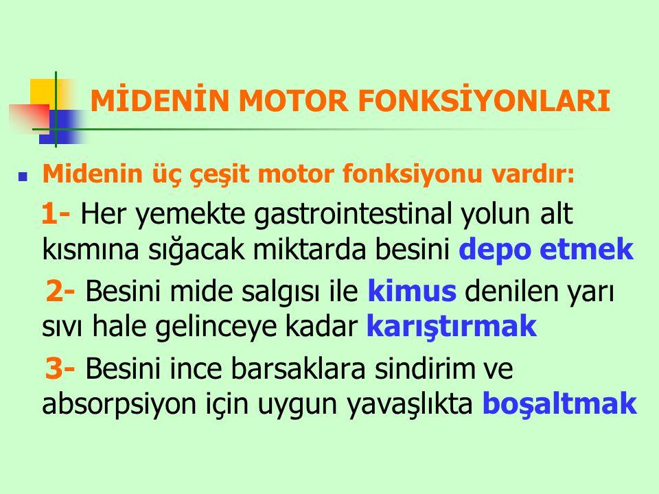 MİDENİN MOTOR FONKSİYONLARI Midenin üç çeşit motor fonksiyonu vardır: 1- Her yemekte gastrointestinal yolun alt kısmına sığacak miktarda besini depo e