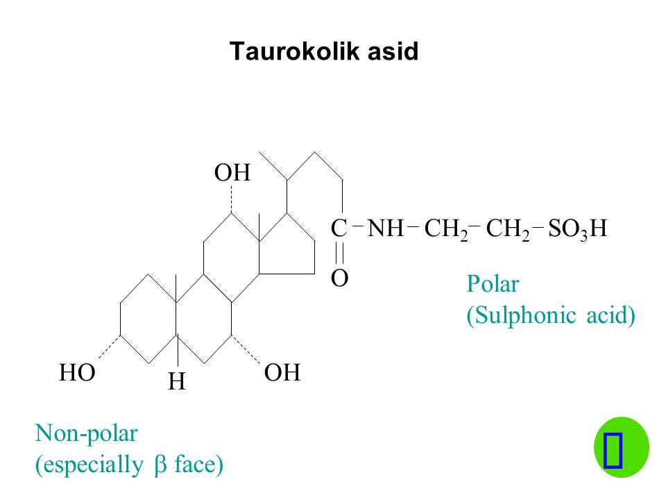 Taurokolik asid HO C NH CH 2 CH 2 SO 3 H OH O Polar (Sulphonic acid) Non-polar (especially  face) H
