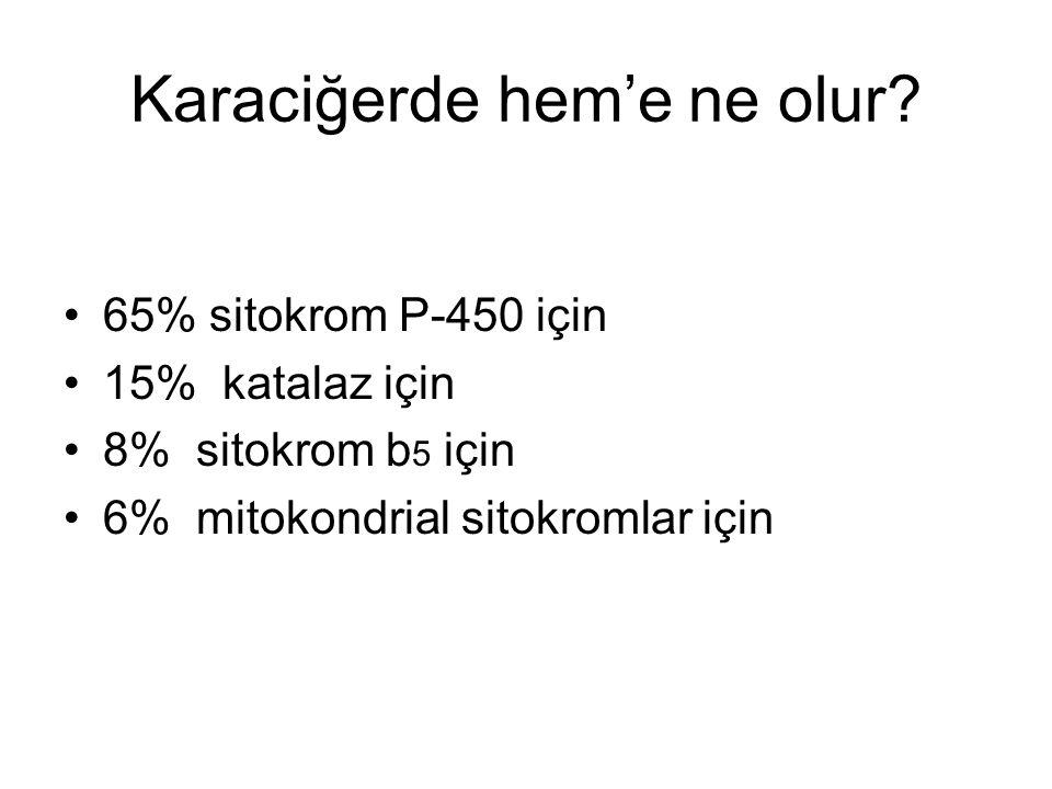 Karaciğerde hem'e ne olur? 65% sitokrom P-450 için 15% katalaz için 8% sitokrom b 5 için 6% mitokondrial sitokromlar için
