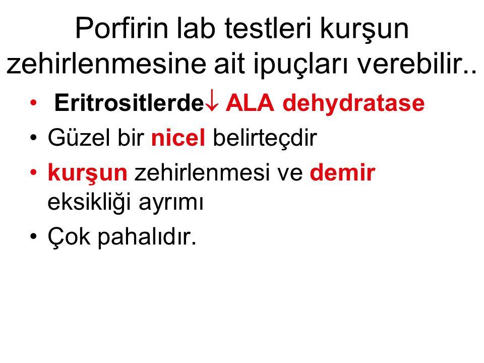 Porfirin lab testleri kurşun zehirlenmesine ait ipuçları verebilir.. Eritrositlerde  ALA dehydratase Güzel bir nicel belirteçdir kurşun zehirlenmesi