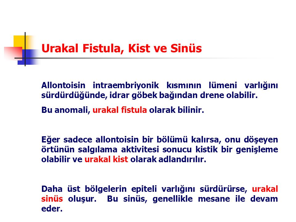 Urakal Fistula, Kist ve Sinüs Allontoisin intraembriyonik kısmının lümeni varlığını sürdürdüğünde, idrar göbek bağından drene olabilir.