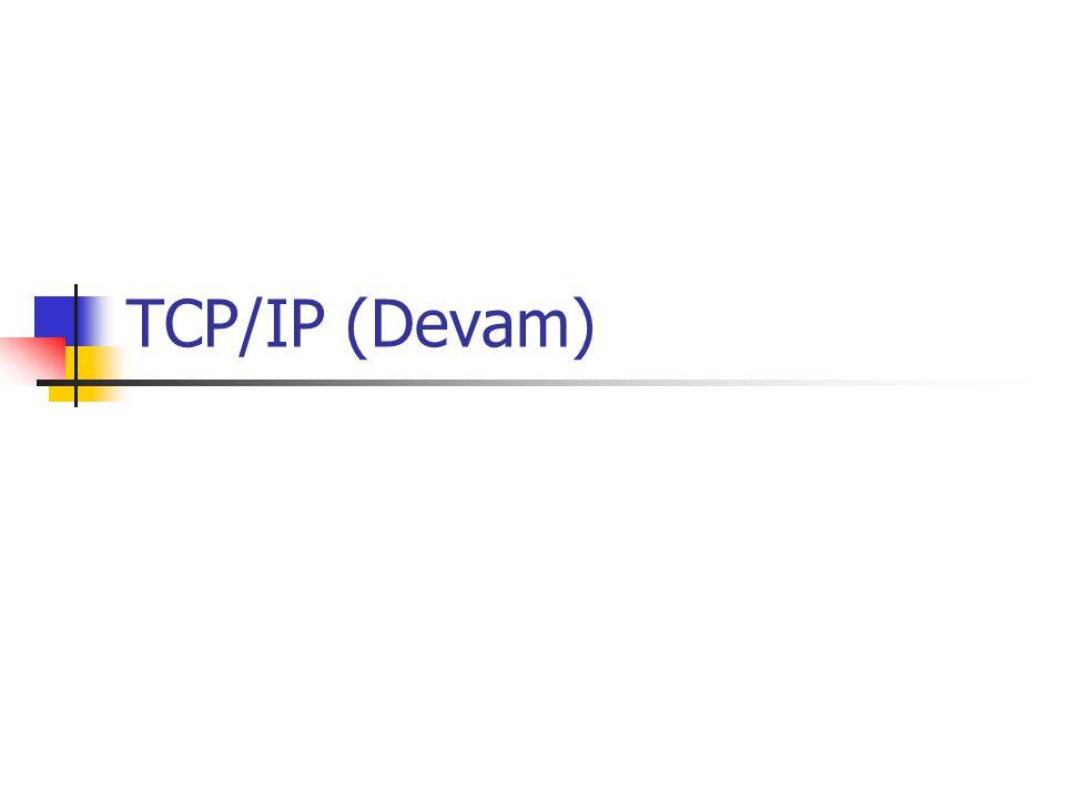 TCP/IP (Devam)