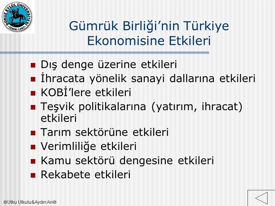 Gümrük Birliği'nin Türkiye Ekonomisine Etkileri Dış denge üzerine etkileri İhracata yönelik sanayi dallarına etkileri KOBİ'lere etkileri Teşvik politi
