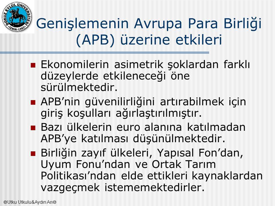 Genişlemenin Avrupa Para Birliği (APB) üzerine etkileri Ekonomilerin asimetrik şoklardan farklı düzeylerde etkileneceği öne sürülmektedir. APB'nin güv