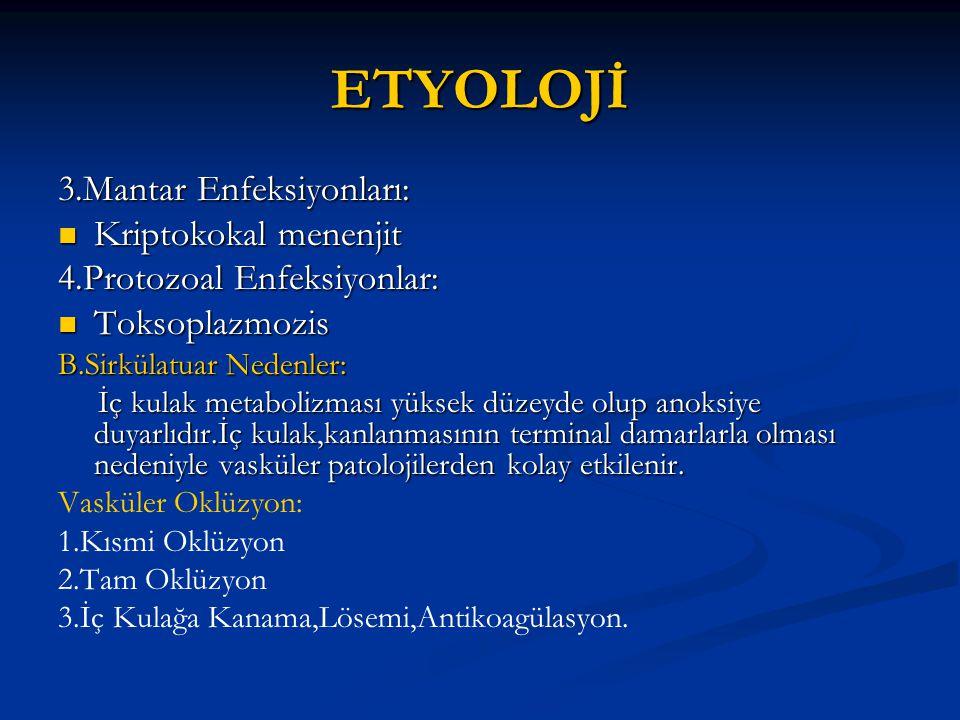ETYOLOJİ 3.Mantar Enfeksiyonları: Kriptokokal menenjit Kriptokokal menenjit 4.Protozoal Enfeksiyonlar: Toksoplazmozis Toksoplazmozis B.Sirkülatuar Ned