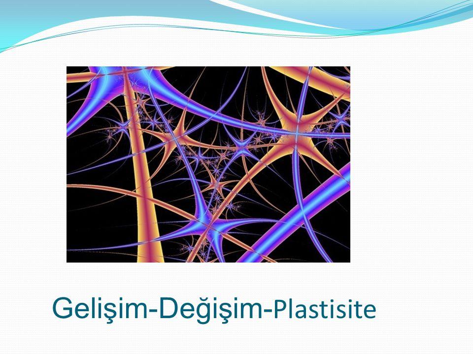 Gelişim-Değişim- Plastisite