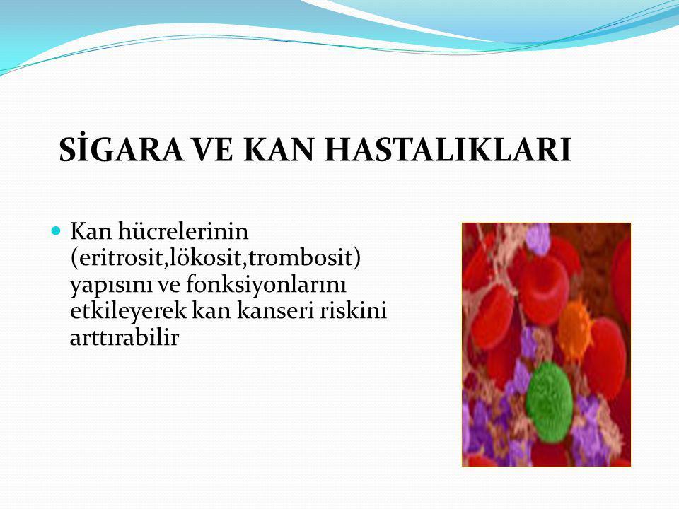 SİGARA VE KAN HASTALIKLARI Kan hücrelerinin (eritrosit,lökosit,trombosit) yapısını ve fonksiyonlarını etkileyerek kan kanseri riskini arttırabilir