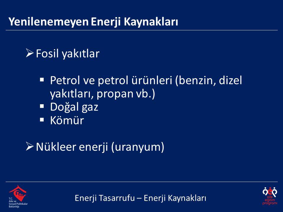  Fosil yakıtlar  Petrol ve petrol ürünleri (benzin, dizel yakıtları, propan vb.)  Doğal gaz  Kömür  Nükleer enerji (uranyum) Enerji Tasarrufu – E