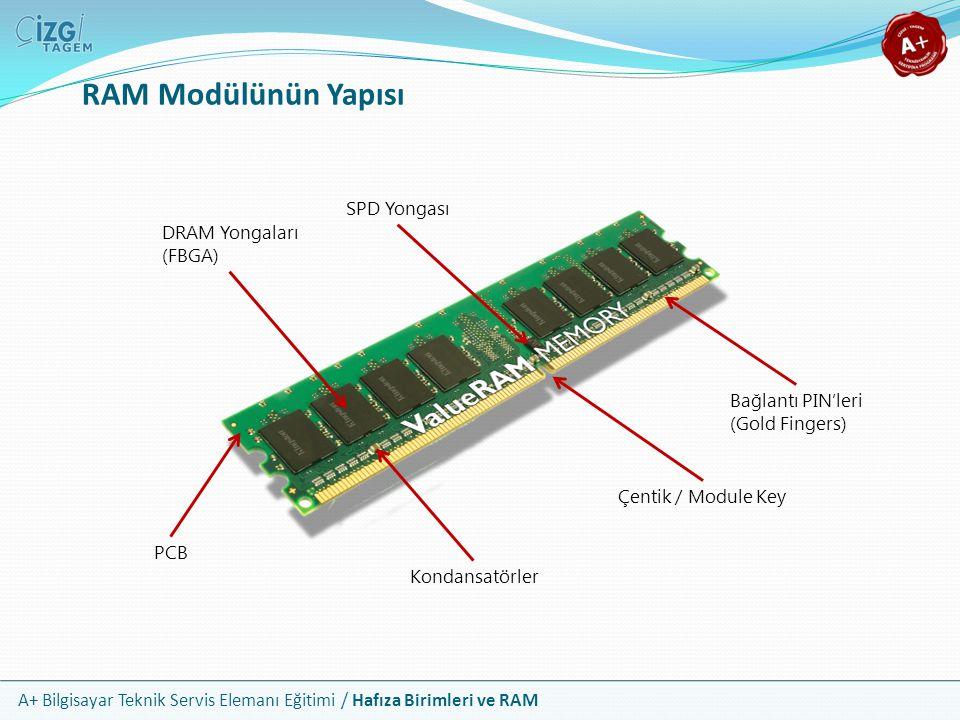 A+ Bilgisayar Teknik Servis Elemanı Eğitimi / Hafıza Birimleri ve RAM RAM Modülünün Yapısı Çentik / Module Key Bağlantı PIN'leri (Gold Fingers) PCB Ko
