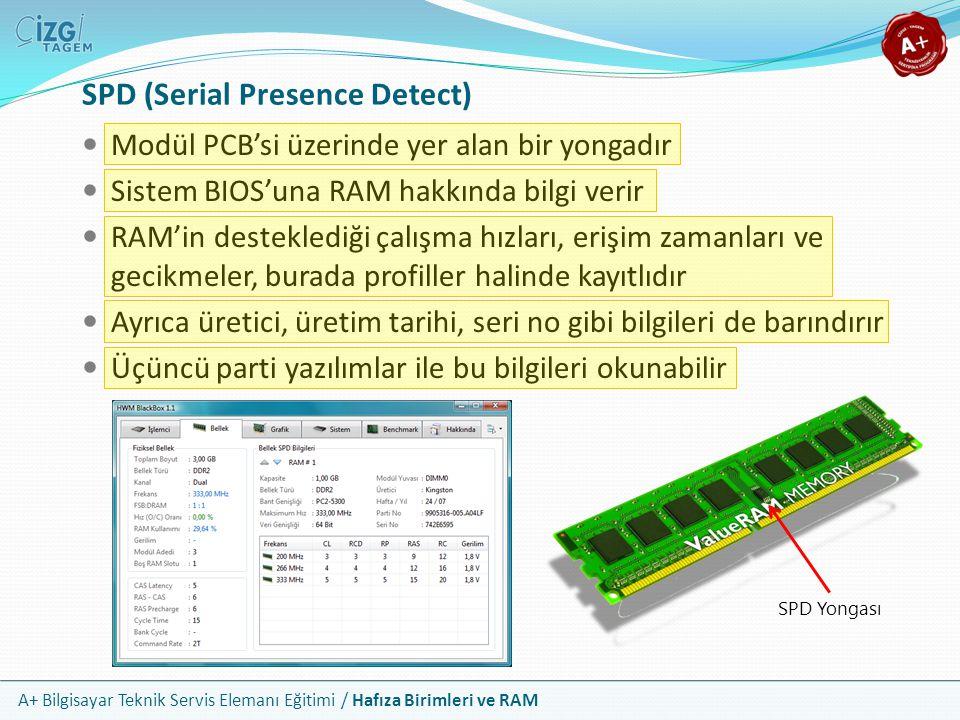 A+ Bilgisayar Teknik Servis Elemanı Eğitimi / Hafıza Birimleri ve RAM SPD (Serial Presence Detect) Modül PCB'si üzerinde yer alan bir yongadır Sistem