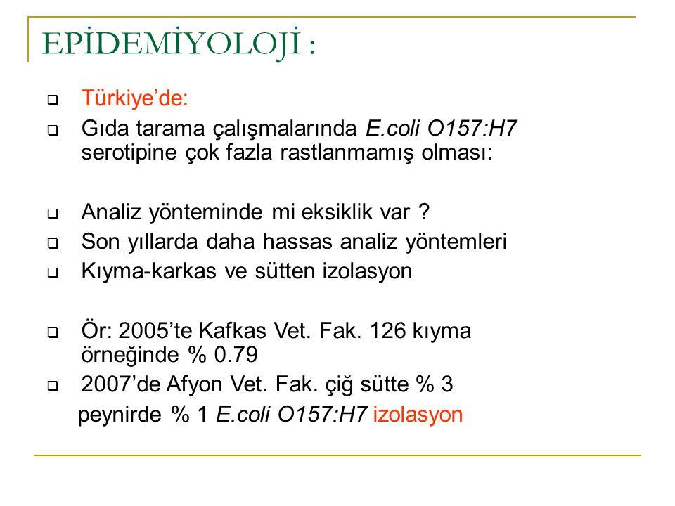  Türkiye'de:  Gıda tarama çalışmalarında E.coli O157:H7 serotipine çok fazla rastlanmamış olması:  Analiz yönteminde mi eksiklik var ?  Son yıllar