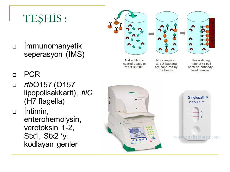  İmmunomanyetik seperasyon (IMS)  PCR  rfbO157 (O157 lipopolisakkarit), fliC (H7 flagella)  İntimin, enterohemolysin, verotoksin 1-2, Stx1, Stx2 '