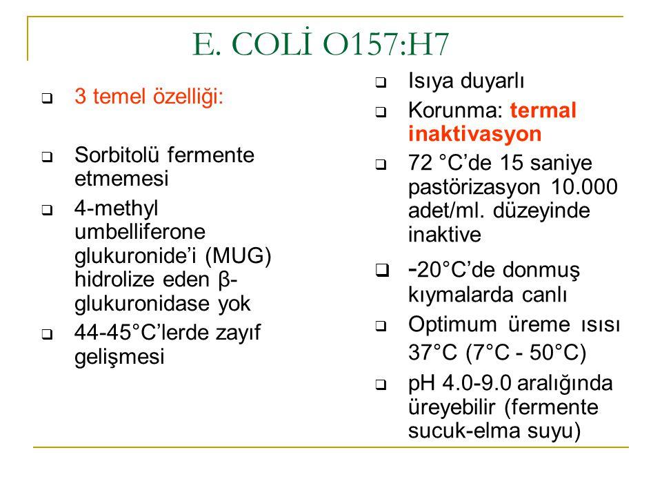  3 temel özelliği:  Sorbitolü fermente etmemesi  4-methyl umbelliferone glukuronide'i (MUG) hidrolize eden β- glukuronidase yok  44-45°C'lerde zay