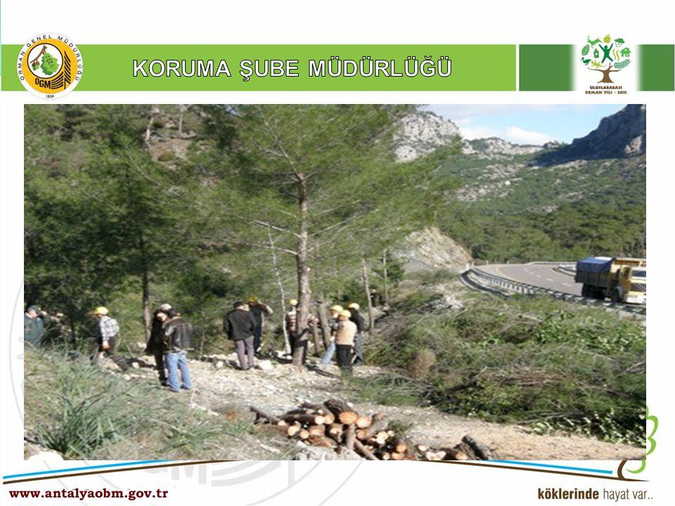 YANGIN Ö NLEYİCİ ÇALIŞMALAR Orman Yangınlarını Önleyici tedbirler kapsamında 2010 yılı içerisinde; 61 Km Yangın Müdahale Cephesi, 9 Km Yangın Koruma Bandı, Trafik yoğunluğunun fazla olduğu toplam 150 Km yol kenarlarında ince yanıcı maddenin azaltılması yönelik temizleme veya kontrollü yakma işlemi yapılmıştır.