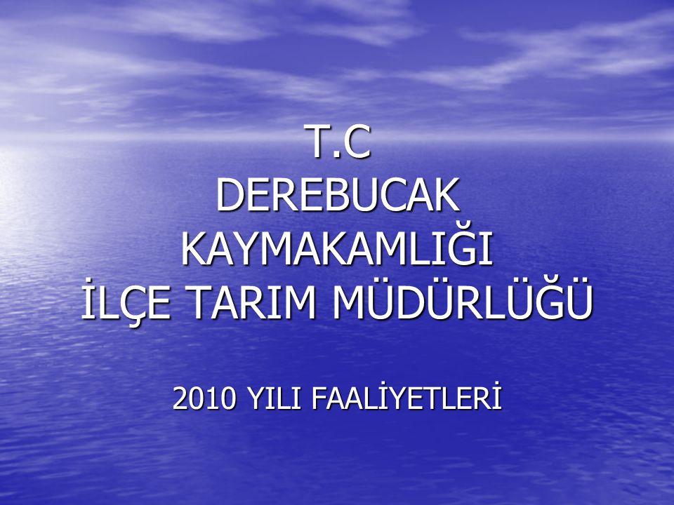 T.C DEREBUCAK KAYMAKAMLIĞI İLÇE TARIM MÜDÜRLÜĞÜ 2010 YILI FAALİYETLERİ