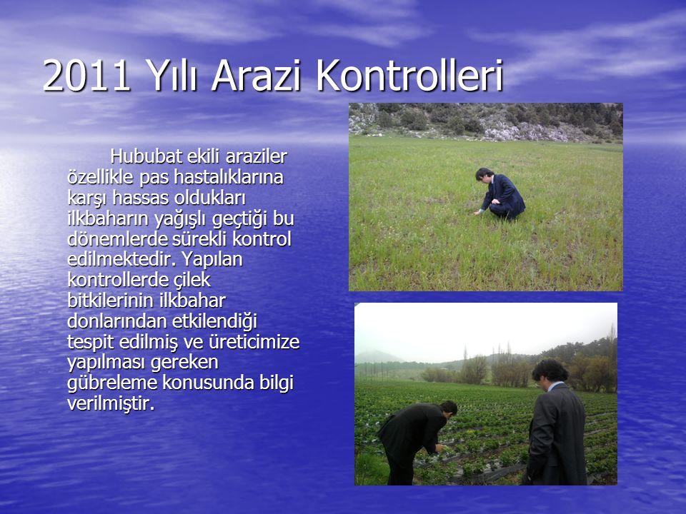 2011 Yılı Arazi Kontrolleri Hububat ekili araziler özellikle pas hastalıklarına karşı hassas oldukları ilkbaharın yağışlı geçtiği bu dönemlerde sürekl