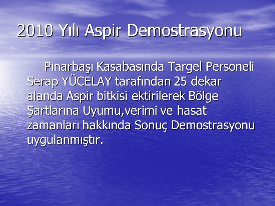 2010 Yılı Aspir Demostrasyonu Pınarbaşı Kasabasında Targel Personeli Serap YÜCELAY tarafından 25 dekar alanda Aspir bitkisi ektirilerek Bölge Şartları