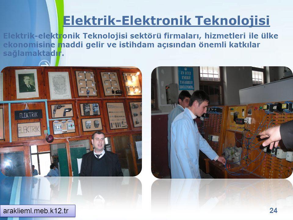 Powerpoint Templates 23 Bilişim Teknolojileri Alanı Web Programcılığı Bilgisayar sistemlerinin donanım ve yazılım olarak kurulumu bilgilerinin yanında