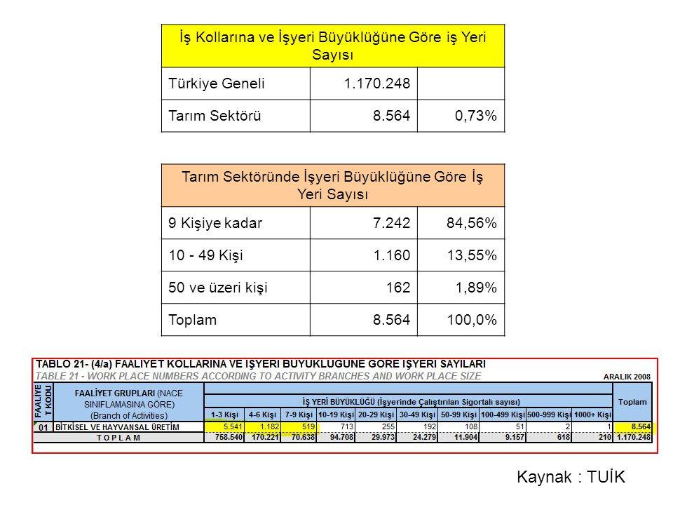 İş Kollarına ve İşyeri Büyüklüğüne Göre iş Yeri Sayısı Türkiye Geneli1.170.248 Tarım Sektörü8.5640,73% Tarım Sektöründe İşyeri Büyüklüğüne Göre İş Yeri Sayısı 9 Kişiye kadar7.24284,56% 10 - 49 Kişi1.16013,55% 50 ve üzeri kişi1621,89% Toplam8.564100,0% Kaynak : TUİK