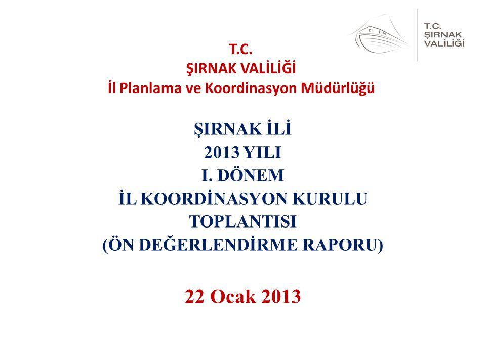 ŞIRNAK İLİ 2013 YILI I.