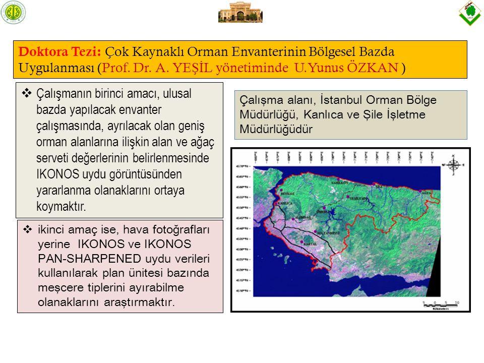 Doktora Tezi: Çok Kaynaklı Orman Envanterinin Bölgesel Bazda Uygulanması (Prof.