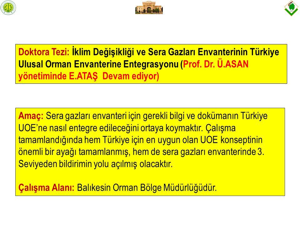 Doktora Tezi: İklim Değişikliği ve Sera Gazları Envanterinin Türkiye Ulusal Orman Envanterine Entegrasyonu (Prof.