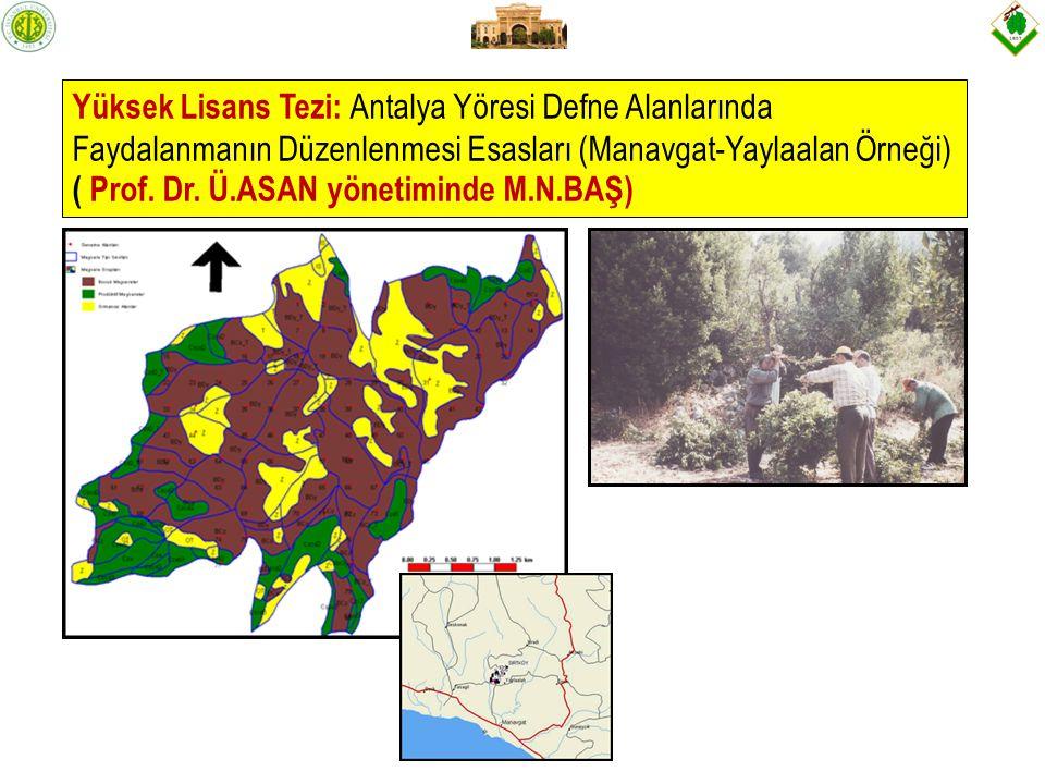 Yüksek Lisans Tezi: Antalya Yöresi Defne Alanlarında Faydalanmanın Düzenlenmesi Esasları (Manavgat-Yaylaalan Örneği) ( Prof.