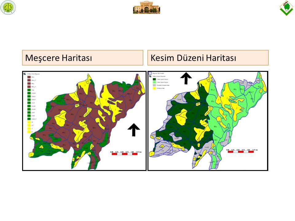 Meşcere HaritasıKesim Düzeni Haritası