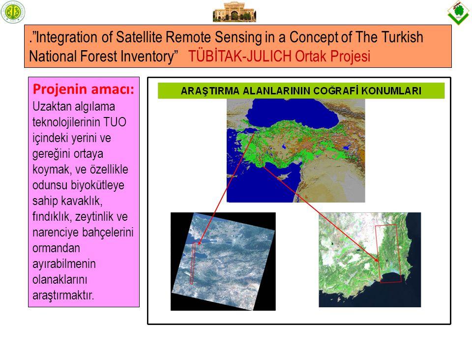 . Integration of Satellite Remote Sensing in a Concept of The Turkish National Forest Inventory TÜBİTAK-JULICH Ortak Projesi Projenin amacı: Uzaktan algılama teknolojilerinin TUO içindeki yerini ve gereğini ortaya koymak, ve özellikle odunsu biyokütleye sahip kavaklık, fındıklık, zeytinlik ve narenciye bahçelerini ormandan ayırabilmenin olanaklarını araştırmaktır.