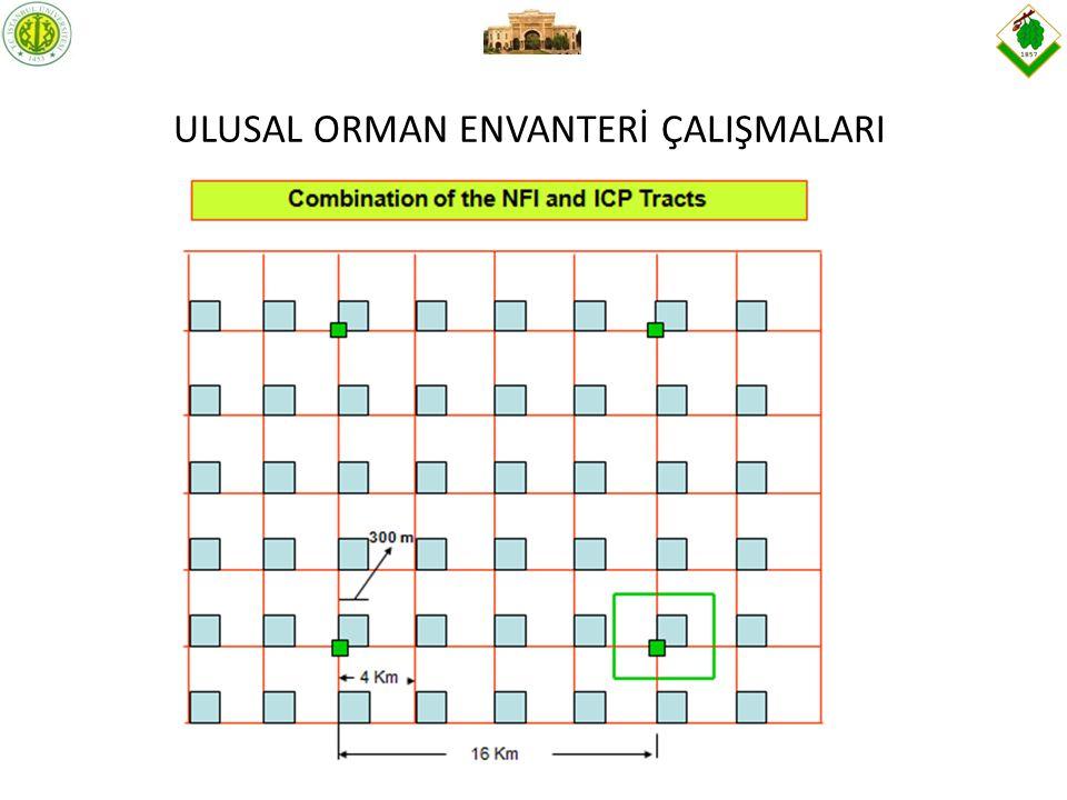 ULUSAL ORMAN ENVANTERİ ÇALIŞMALARI