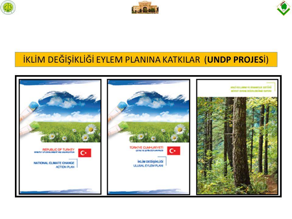 İKLİM DEĞİŞİKLİĞİ EYLEM PLANINA KATKILAR (UNDP PROJESİ)