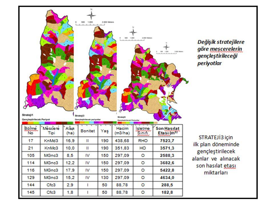 3 Düzenleme Süresi içinde alanların değişimi (I.Yöntem) I.