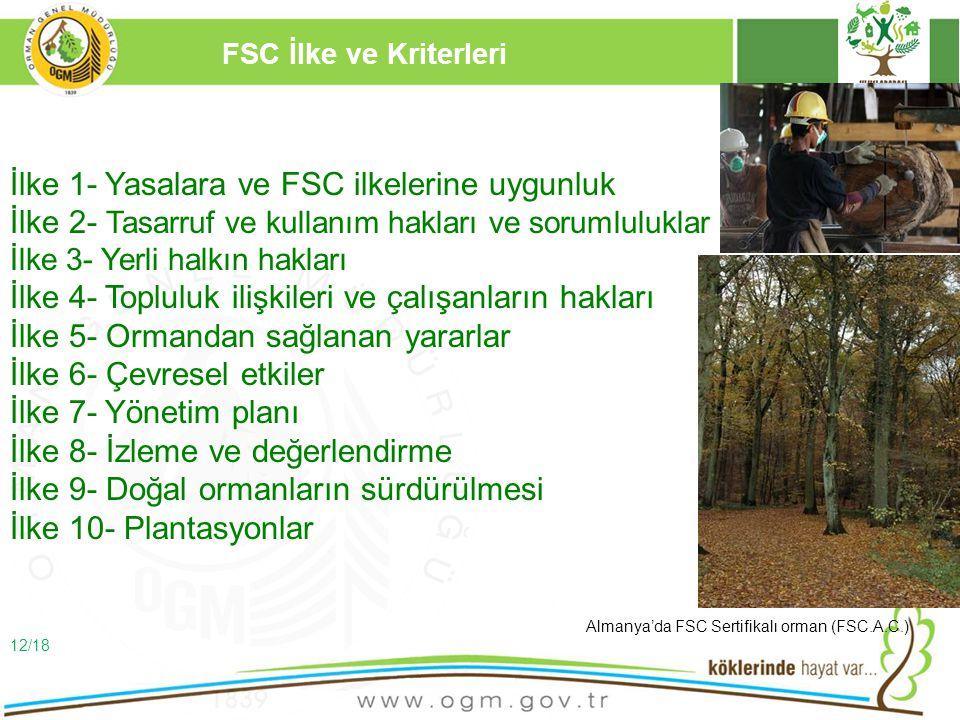 16/12/2010 Kurumsal Kimlik 12 FSC İlke ve Kriterleri İlke 1- Yasalara ve FSC ilkelerine uygunluk İlke 2- Tasarruf ve kullanım hakları ve sorumluluklar