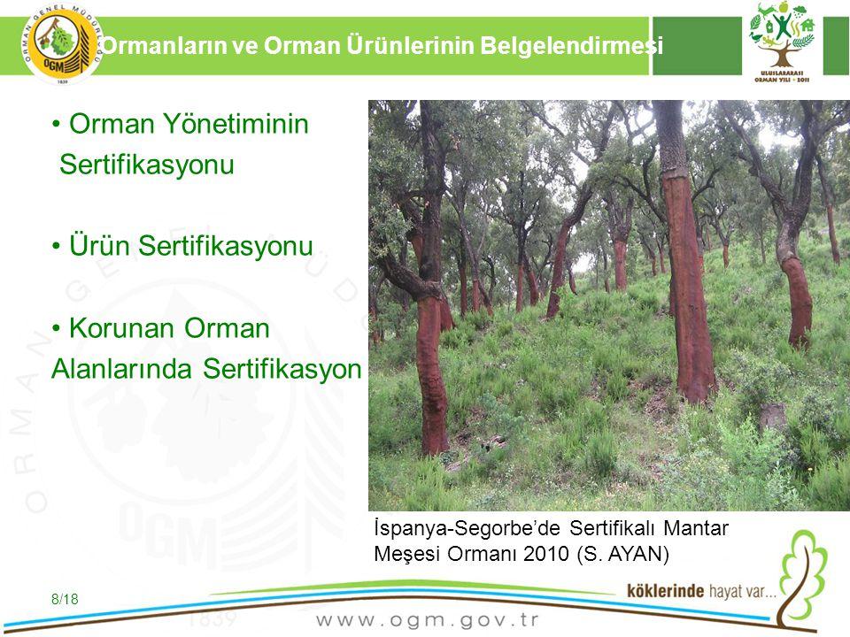 16/12/2010 Kurumsal Kimlik 8 Orman Yönetiminin Sertifikasyonu Ürün Sertifikasyonu Korunan Orman Alanlarında Sertifikasyon 8/18 Ormanların ve Orman Ürü