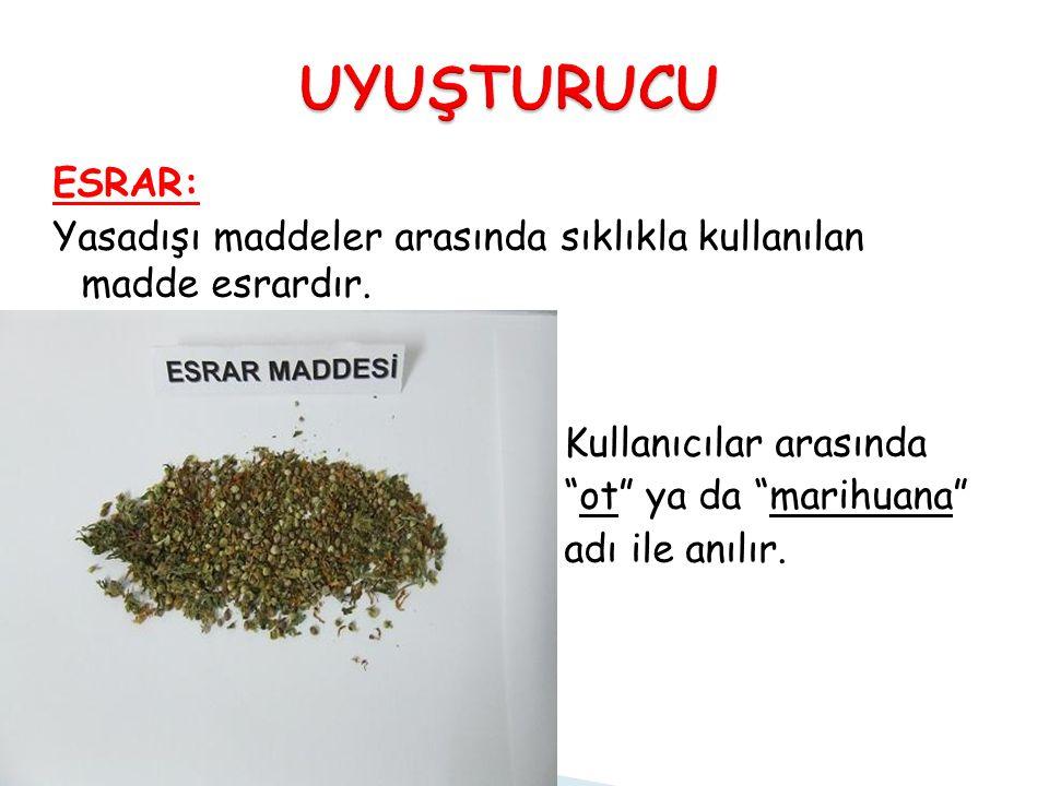 """ESRAR: Yasadışı maddeler arasında sıklıkla kullanılan madde esrardır. Kullanıcılar arasında """"ot"""" ya da """"marihuana"""" adı ile anılır."""