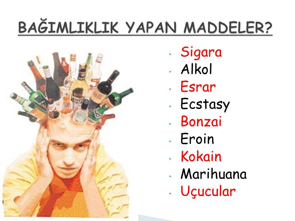 Sigara Alkol Esrar Ecstasy Bonzai Eroin Kokain Marihuana Uçucular