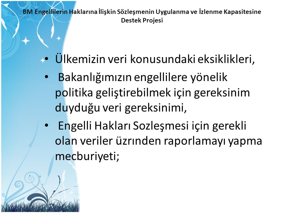 BM Engellilerin Haklarına İlişkin Sözleşmenin Uygulanma ve İzlenme Kapasitesine Destek Projesi – Engellilik göstergeleri ile ilgili diğer ülkelerdeki uygulamaların gözden geçirilmesi – Türkiye'deki uygulamalar ve global uygulamalar/uluslararası yükümlülükler üzerine yapılmış olan çalışmalara dayanan bir ayrım çözümleme (gap analysis) çalışması yürütülmesi – Göstergelerin tanımlanması