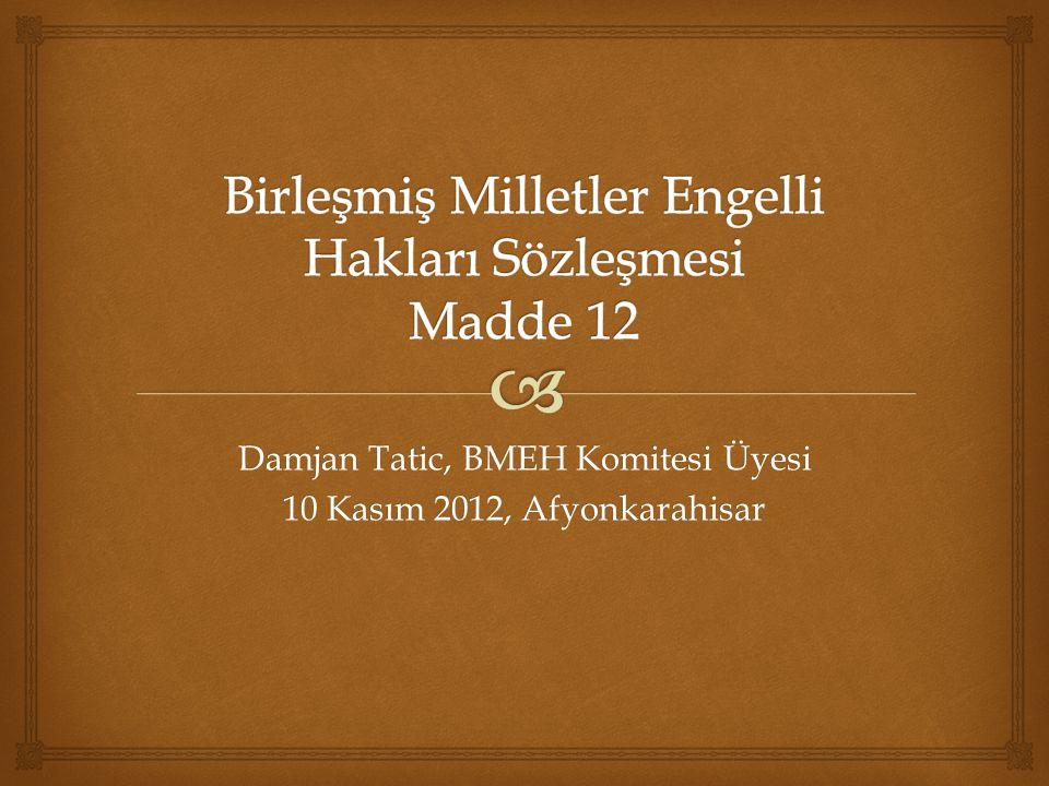Damjan Tatic, BMEH Komitesi Üyesi 10 Kasım 2012, Afyonkarahisar