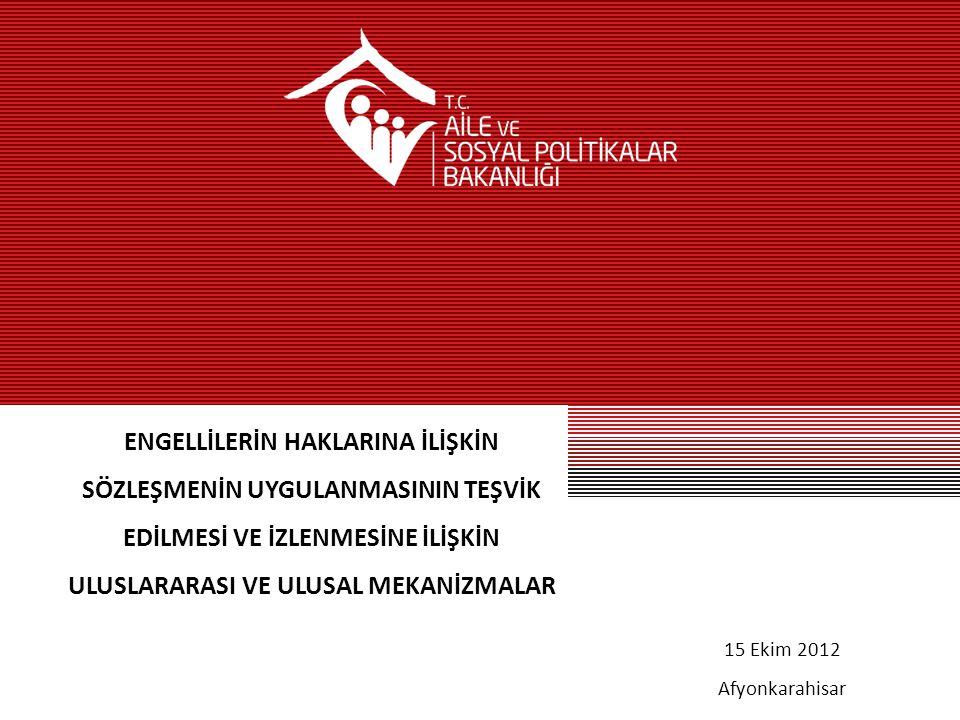 www.ozurluveyasli.gov.tr Uluslararası İzleme Mekanizması Nedir.