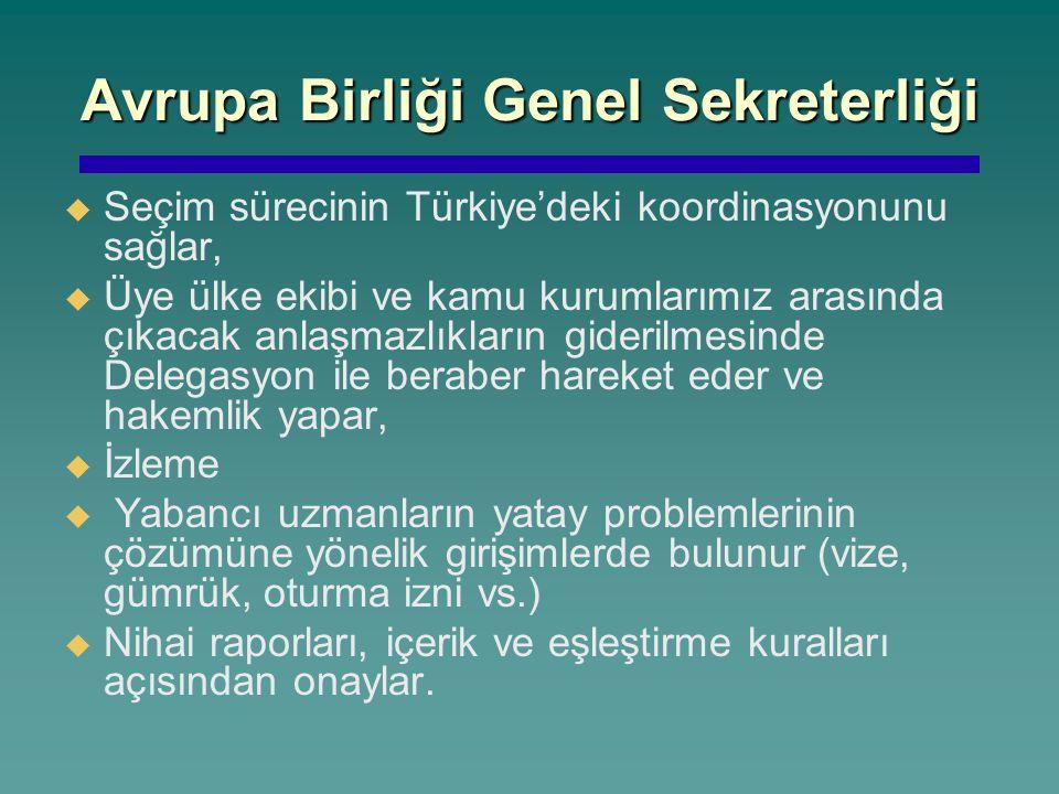 Avrupa Birliği Genel Sekreterliği   Seçim sürecinin Türkiye'deki koordinasyonunu sağlar,   Üye ülke ekibi ve kamu kurumlarımız arasında çıkacak an