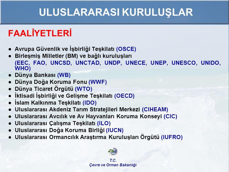 FAALİYETLERİ ● Avrupa Güvenlik ve İşbirliği Teşkilatı (OSCE) ●Birleşmiş Milletler (BM) ve bağlı kuruluşları (EEC, FAO, UNCSD, UNCTAD, UNDP, UNECE, UNE