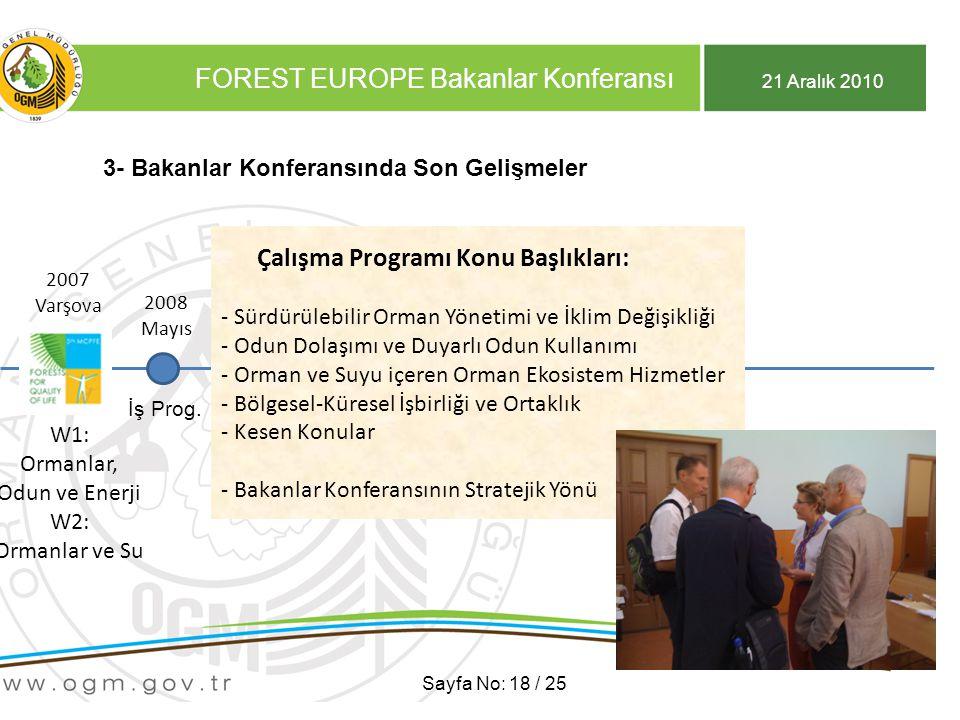 21 Aralık 2010 FOREST EUROPE Bakanlar Konferansı Sayfa No: 18 / 25 3- Bakanlar Konferansında Son Gelişmeler 2007 Varşova 2007 Varşova W1: Ormanlar, Odun ve Enerji W2: Ormanlar ve Su 2008 Mayıs İş Prog.
