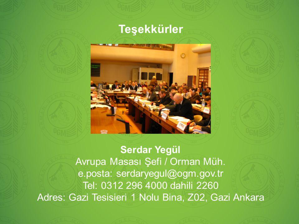 Teşekkürler Serdar Yegül Avrupa Masası Şefi / Orman Müh.