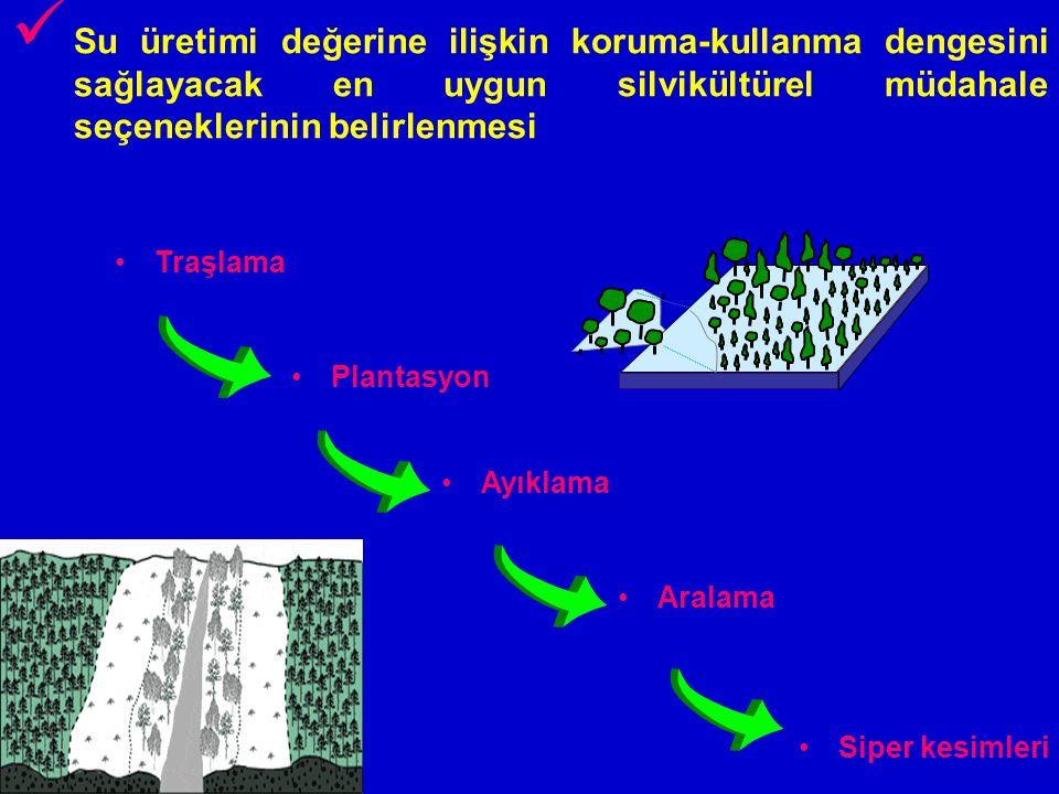 Su üretimi değerine ilişkin koruma-kullanma dengesini sağlayacak en uygun silvikültürel müdahale seçeneklerinin belirlenmesi Siper kesimleri Aralama P